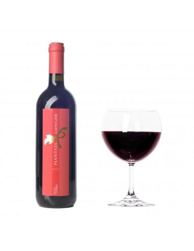 """Red Wine """"Rosso Conero"""" di Piantate..."""